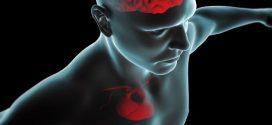 التعرف على امراض القلب