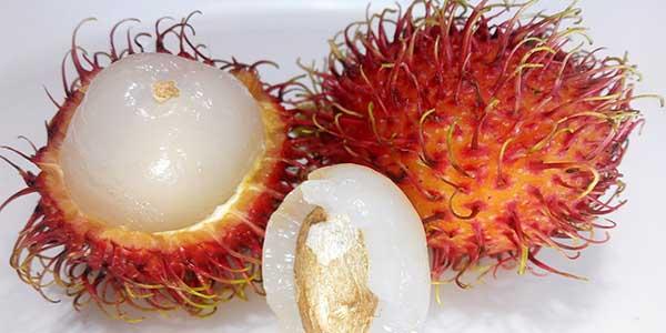 اهمية فاكهة الرامبوتان