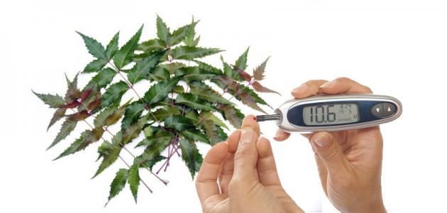 كيفية علاج السكر بالأعشاب
