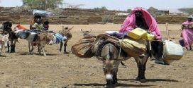 حقيقة ظهور مصاص دماء في السودان