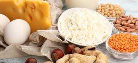 اهمية البروتين الصحيه