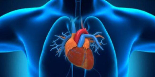 اسباب رفة القلب