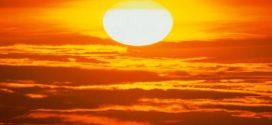 فوائد الشمس للجسم