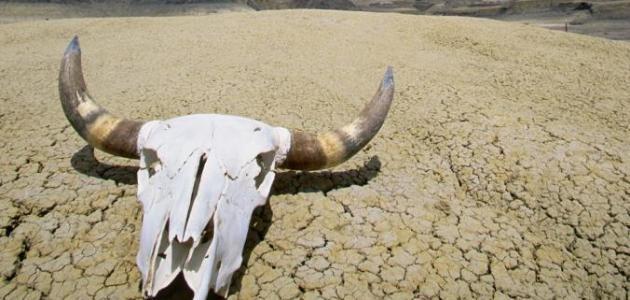 تاريخ صحراء وادي الموت